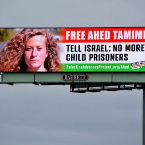 Ahed Campaign, The Palestine Chronical